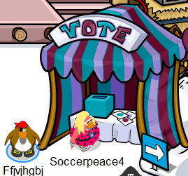 color vote booth 09